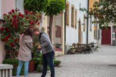 gemeinsames fotografieren in der Nabburger Altstadt